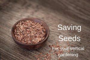 Vertical Garden Saving Seeds