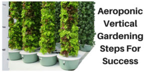 Aeroponic Vertical Gardening Steps For Success