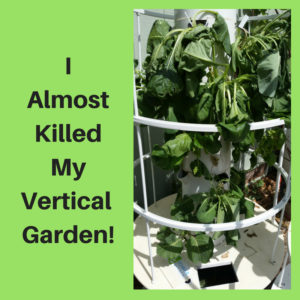 I Almost Killed My Vertical Garden!