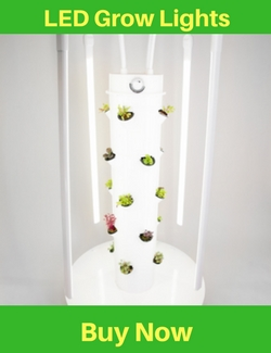What Is Tower Garden