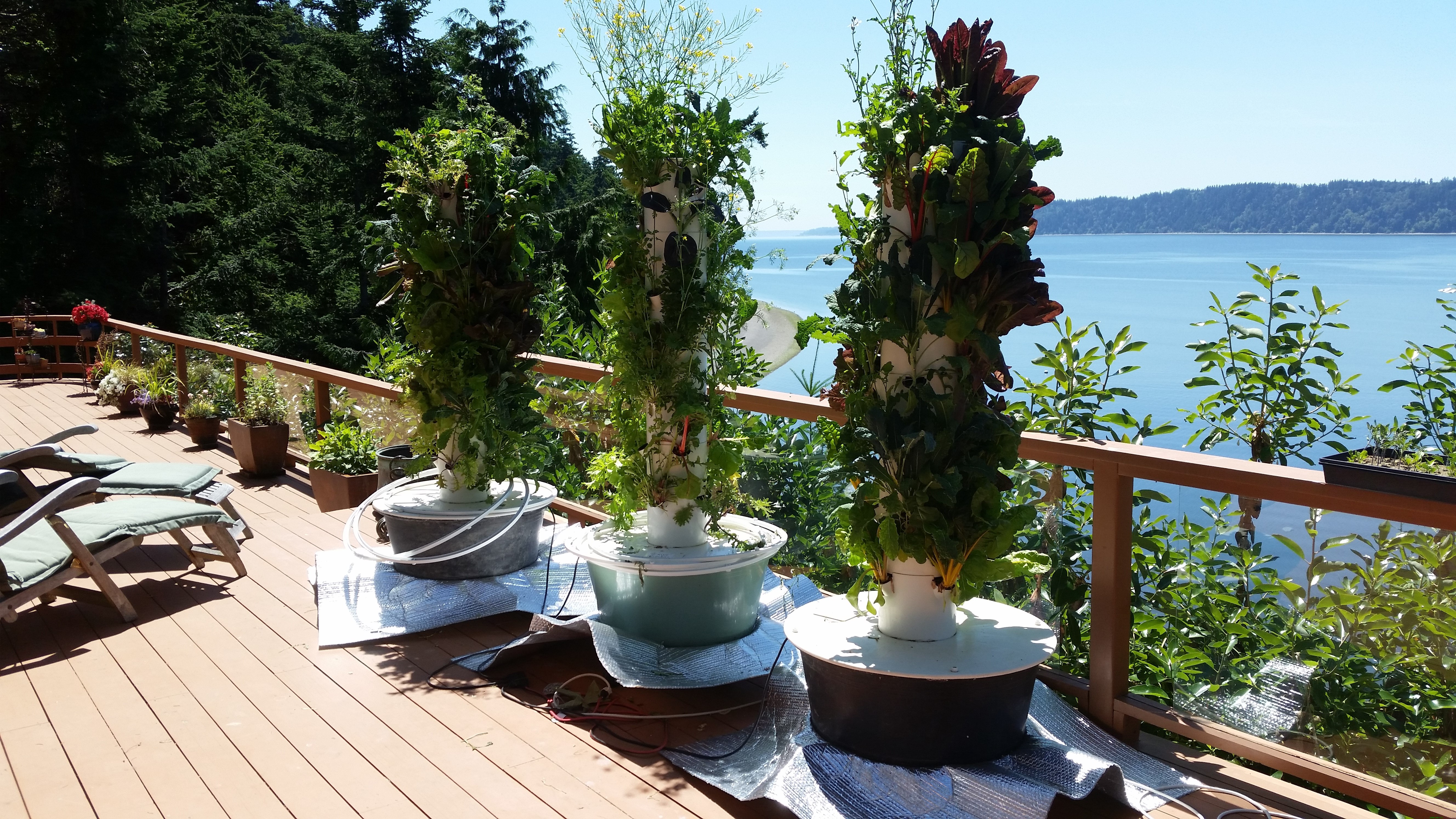 Photo of 3 Tower Gardens with sun reflectors around their bases.