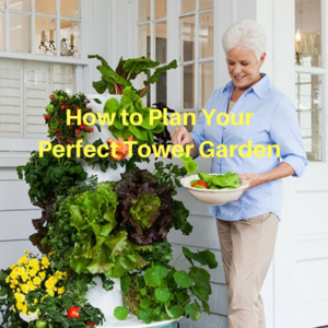 How to Plan Your Perfect Tower Garden