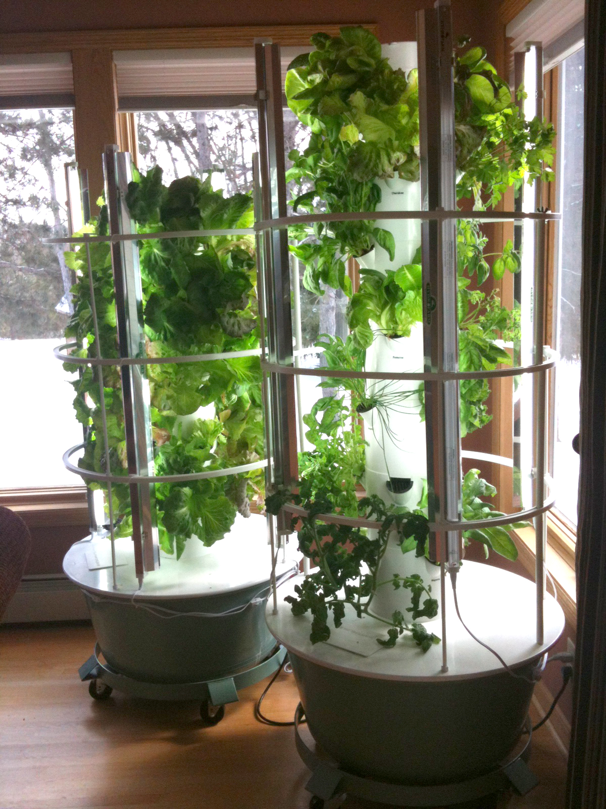What Should I Buy A Tower Garden by Backyard Tower Garden
