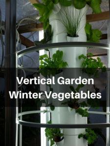 Vertical Garden Winter Vegetables