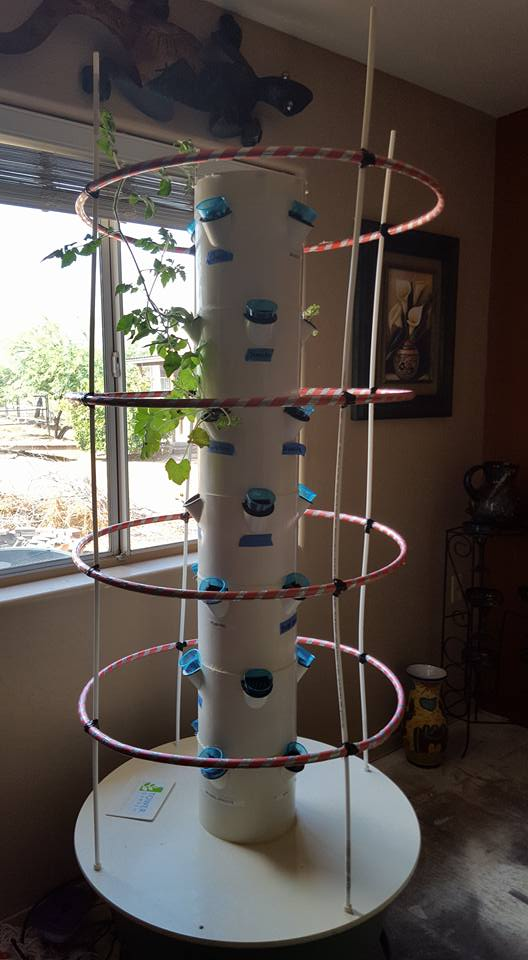 Hula Hoop Tower Garden Tomato Cage